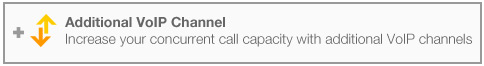 Increase your concurrent call capacity with additional VoIP channels