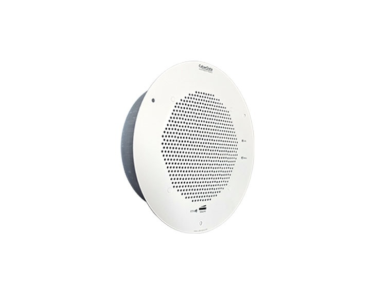 CyberData SynApps Enabled Speaker Gray White (RAL 9002) 011104